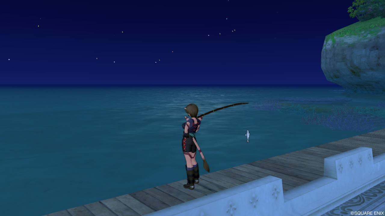 うるわしの海浜(夜釣り)